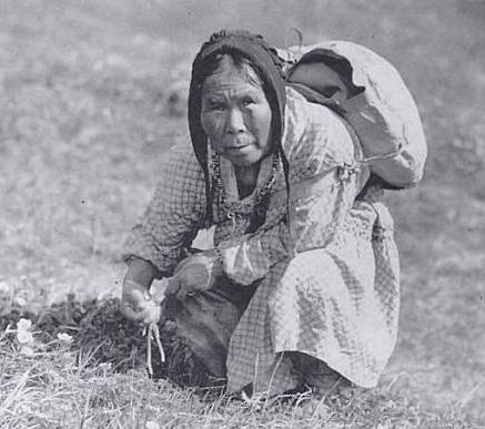 Inuit-verzamelt-knollen