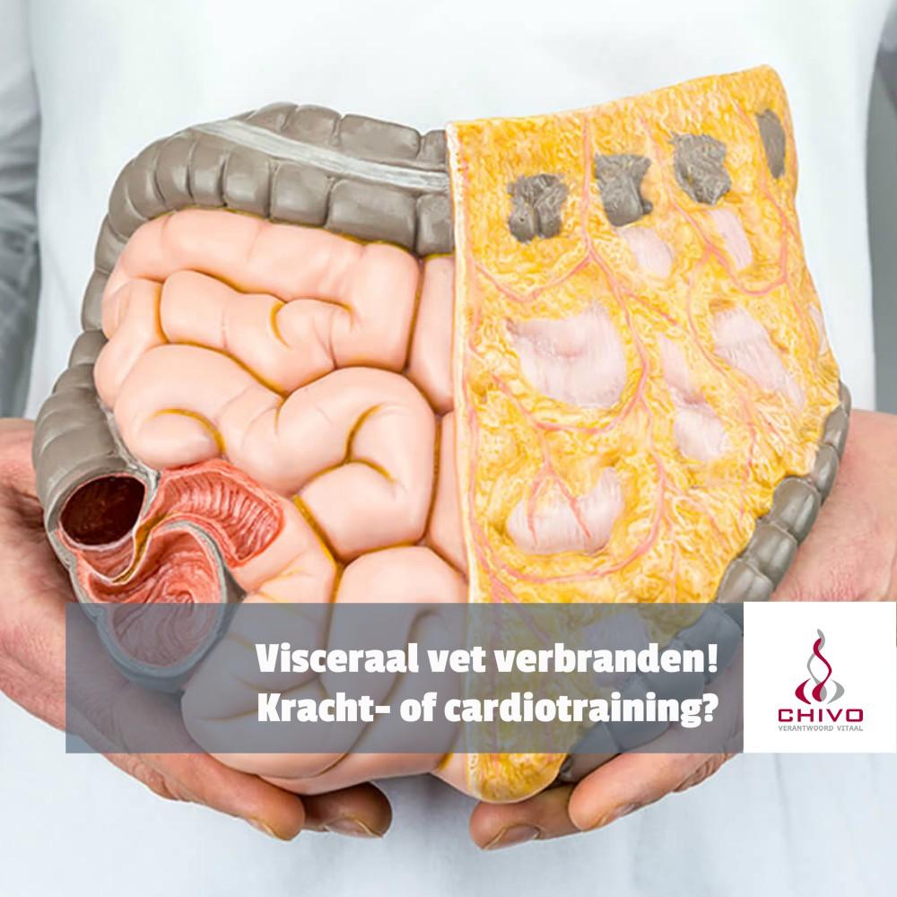 Visceraal vet verbranden met cardio- of krachttraining