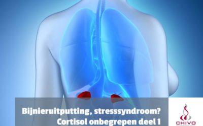 Cortisol onbegrepen deel 1: Bijnieruitputting, stresssyndroom van de 21e eeuw?