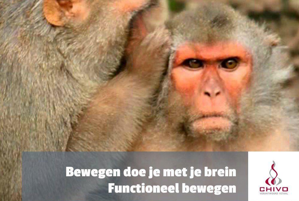 Bewegen doe je met je brein