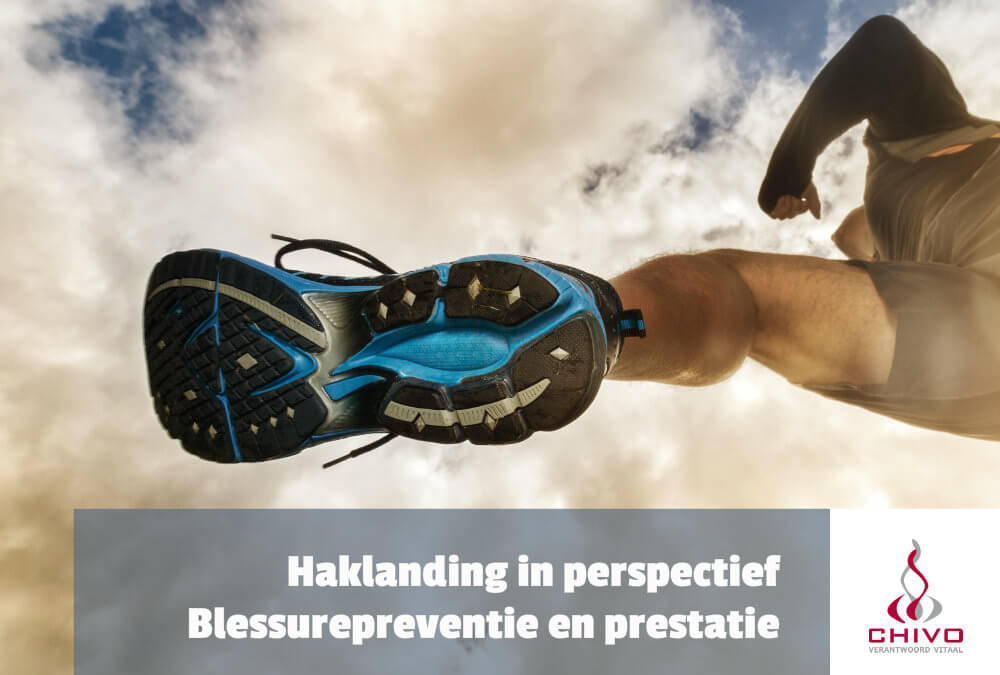 De haklanding in perspectief