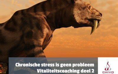 Vitaliteitscoaching deel 2: Chronische stress is niet het probleem