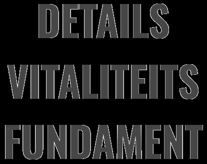 Details Vitaliteitsfundament